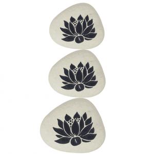 Stein Lotus