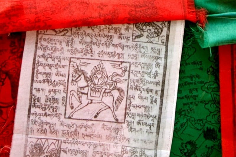 tibetisches Windpferd auf einer Lunge ta Flagge