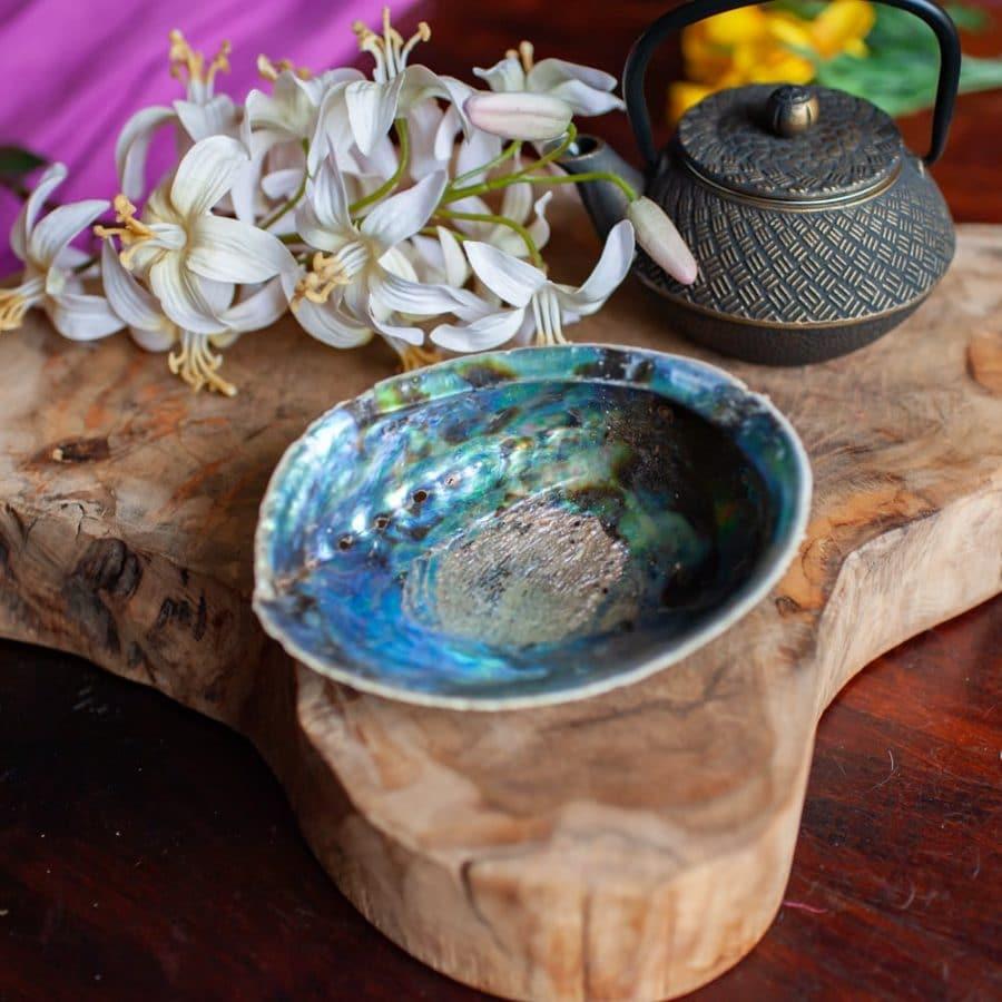 Abalone Muschel auf Holz mit Blumen und Teepott
