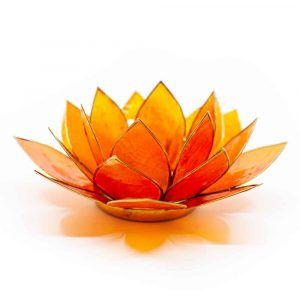 Lotus Atmosphärischeslicht Hellorange 2. Chakra Goldrand