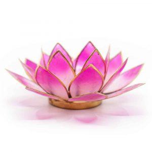 Lotus Atmosphärisches Licht 2-Farbig Weiß/Rosa Goldrand
