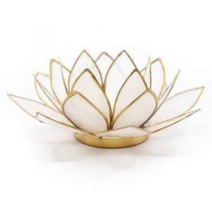 Lotus Atmosphärisches Licht Natürlicher Goldrand