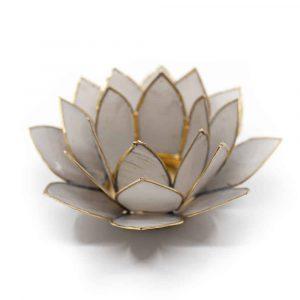 Lotus Atmosphärisches Licht Grau Goldrand