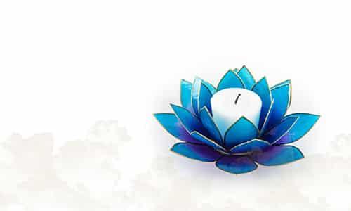 Stimmungslichter Lotus