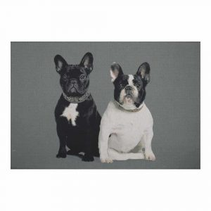 Fussmatte Französische Bulldoggen (75 x 50 cm)