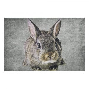 Fussmatte Kaninchen (75 x 50 cm)