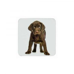 Untersetzer Labrador-Welpe (6er-Set)