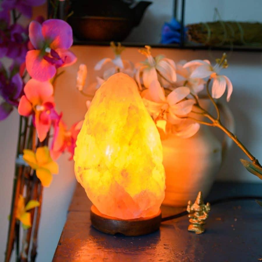 Salzlampe Wirkung Salztischlampe auf Holztisch mit Blumen leuchtend