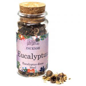Eucalyptus Räucherwerk / Weihrauchkräuter