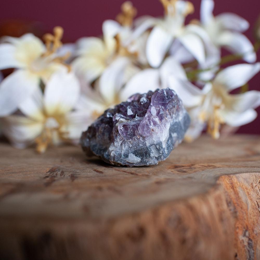 Entstehung edelsteine Amethyst geode auf holz vor weißen Blumen