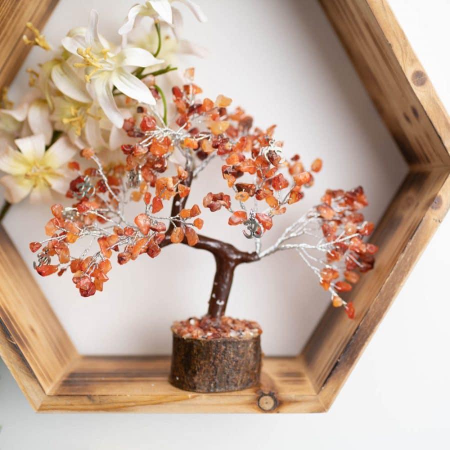 EdelsteinBaum orange Holz auf Regal mit weißen Blumen